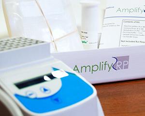 AmplifyRP