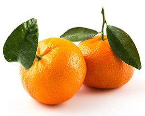 Fotolia_fruit