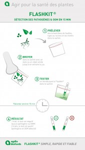 Nouveau !! Infographie Flashkit ®